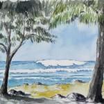 La Réunion 2009 5