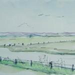 Baie des Veys Marais de Carentan nov 2012
