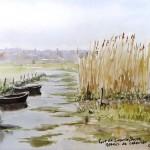 Marais de Carentan