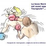 Boxe teurgoule