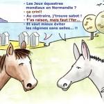Chevaux - Jeux Equestres Mondiaux Normandie 2014