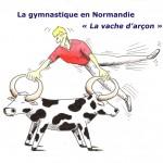 Gymnastique - Vache d'arçon