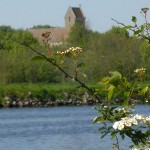 Eglise ouistreham arbre fleur 1er plan vertical